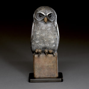 """""""Young Owl"""""""